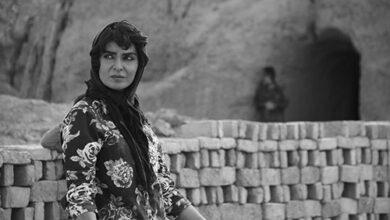 تصویر از دو جایزه بین المللی برای «دشت خاموش» در جشنواره فیلم ونیز